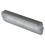 Ansell 3w Guardian LED Maint/Non-Maint Bulkhead Supplied Complete With Legend.